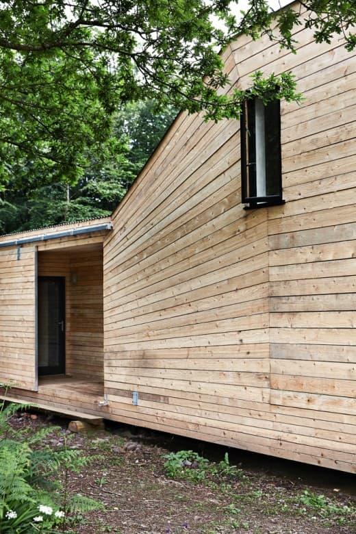 Hooke wood021