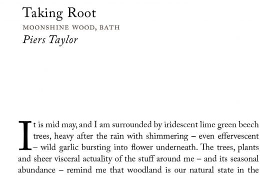 Taking Root moonshine wood 1cPiers Taylor-1